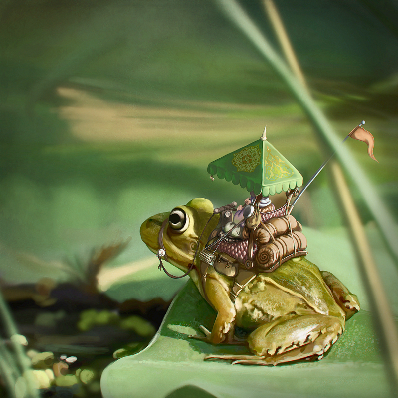 frog-rider800